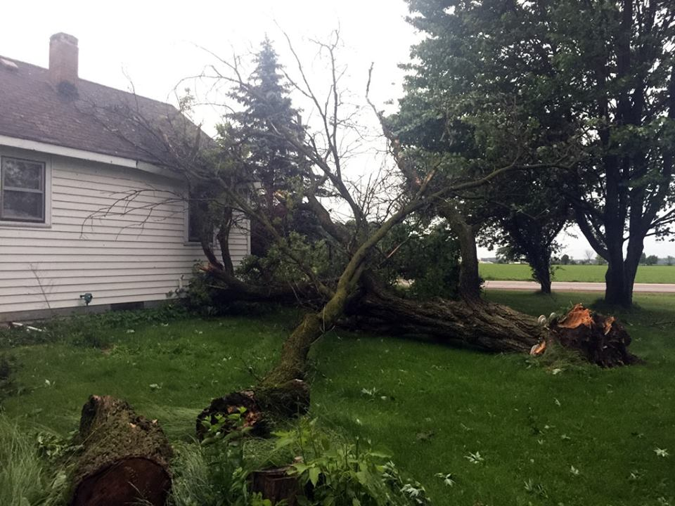 Reader Matt Pilz submitted this photo of a tree fallen and nearly smashing a house.