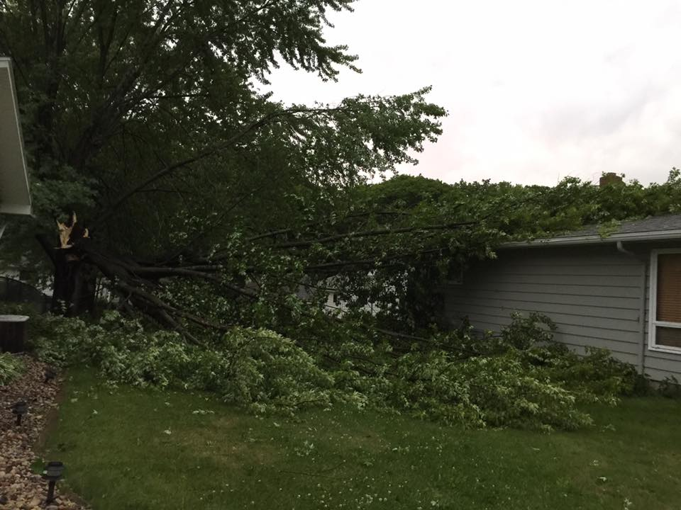 A tree splits and falls on top of a house. (Photo submitted by Cindy Taylor)