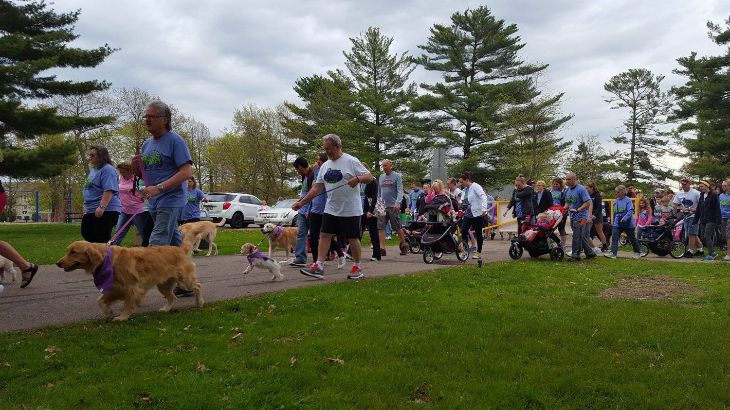 The 2017 Paws for Brittany run/walk raised $9,000 for Marshfield Area Pet Shelter.
