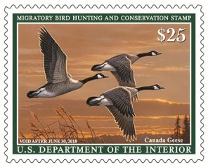 The 2017-2018 Migratory Bird Hunting and Conservation Stamp.